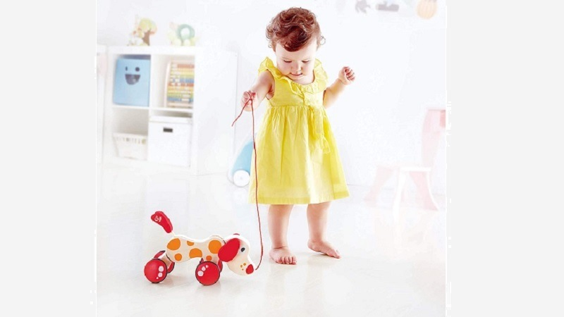 hape wooden wheeled puppy pull toy