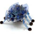 Top Best Rated Hexbug Toys
